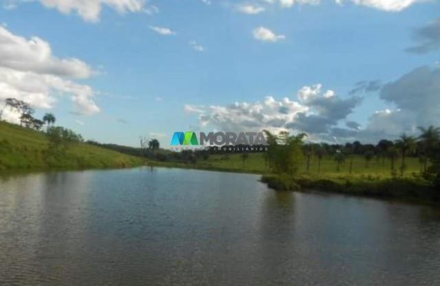 Fazenda / haras à venda - 16 hectares - brumadinho (mg) - Foto 12