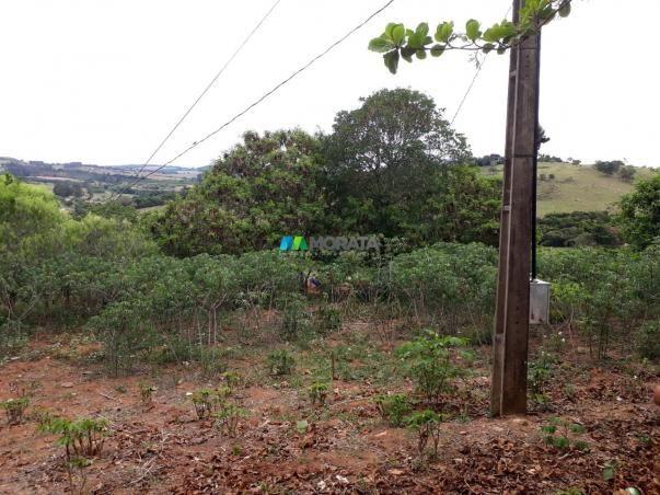 Fazenda à venda - 90 hectares - lavras (mg) - Foto 9