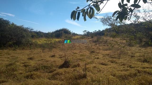 Fazenda à venda - 40 hectares - lavras (mg) - Foto 2