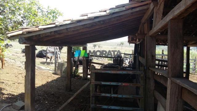 Fazenda - 80,70 hectares - congonhas do norte (mg) - Foto 6