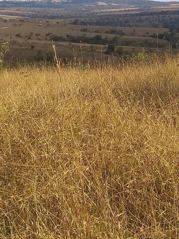 Fazenda em Silvânia - Foto 10
