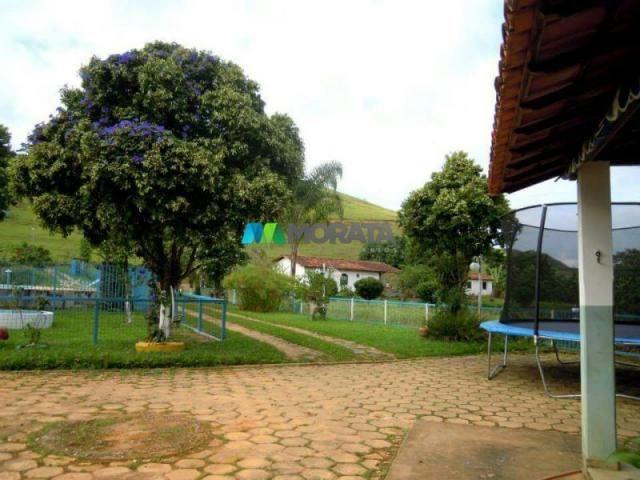 Fazenda / haras à venda - 100 hectares - rio casca (mg) - Foto 4