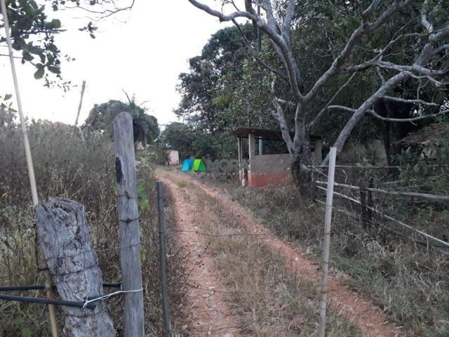Fazendinha - 08 hectares - paraopeba (mg) - Foto 18