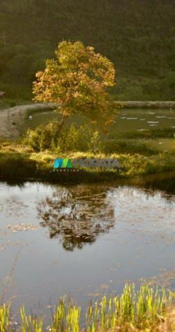 Fazenda à venda - 40 hectares - região santana dos montes (mg) - Foto 7