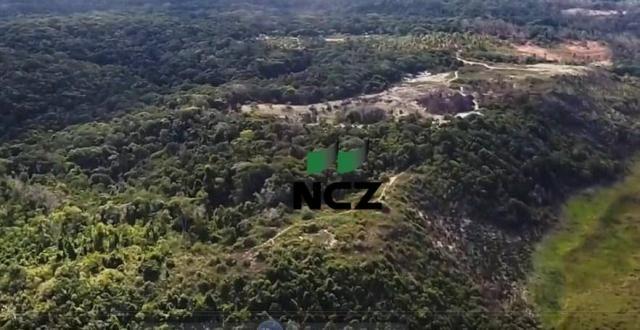 Fazenda à venda, 2100000 m² por r$ 21.000.000,00 - santo andré - santa cruz cabrália/ba - Foto 7