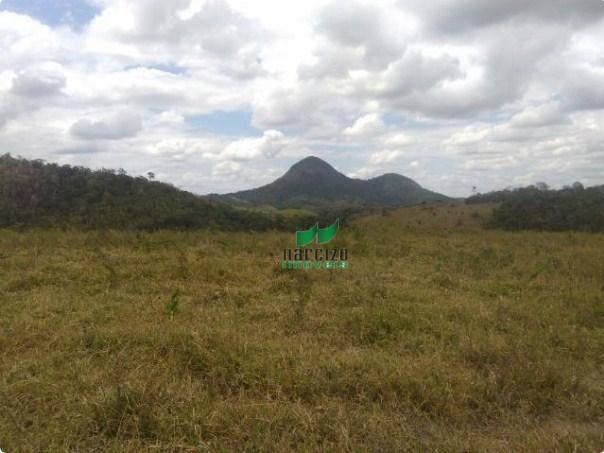 Linda fazenda à venda, 8000000 m² por r$ 6.300.000 - inocoop - itamaraju/ba - Foto 9