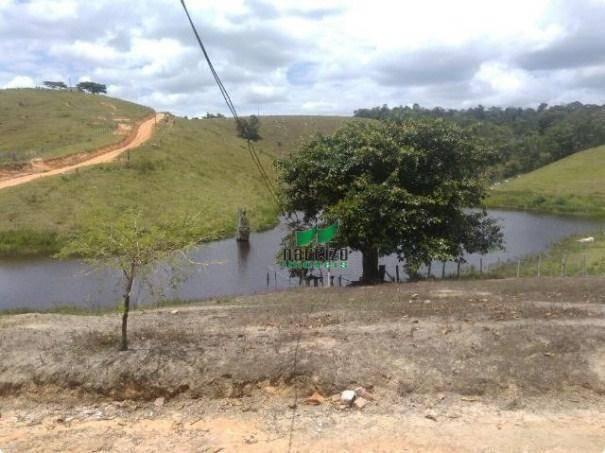 Linda fazenda à venda, 8000000 m² por r$ 6.300.000 - inocoop - itamaraju/ba - Foto 11