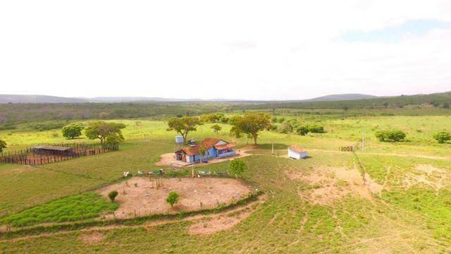 Fazenda Jaguaquara - Foto 4