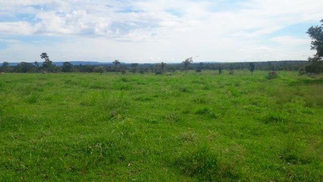 Troco Paraná, 350 alqueires, pecuária, Região de Tangará/ MT - Foto 2