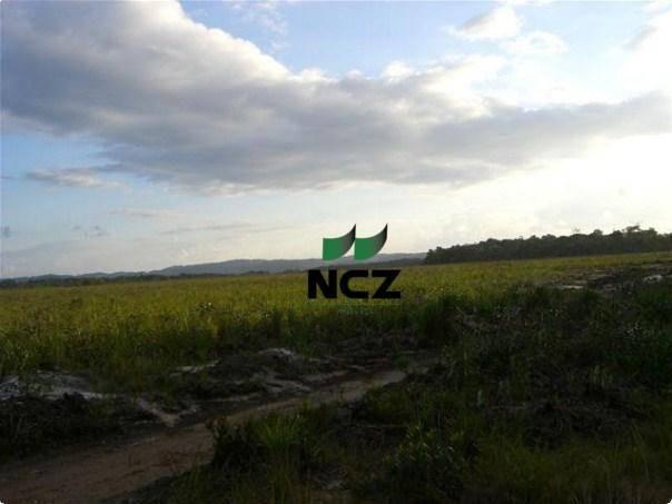 Fazenda à venda, 4080000 m² por r$ 5.000.000 - barra grande - maraú/ba - Foto 12
