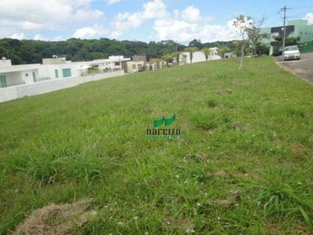 Terreno residencial à venda, abrantes, camaçari - te0111. - Foto 6