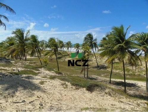 Fazenda à venda, 380000 m² por r$ 3.040.000 - litoral norte - jandaíra/ba - Foto 9