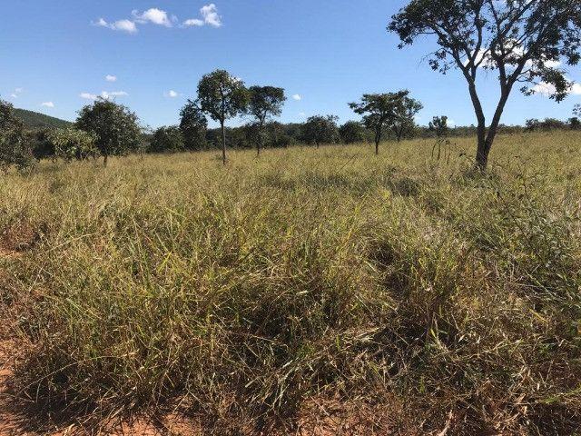 Fazenda 65 Ha em Onça de Pitangui - MG - Foto 17