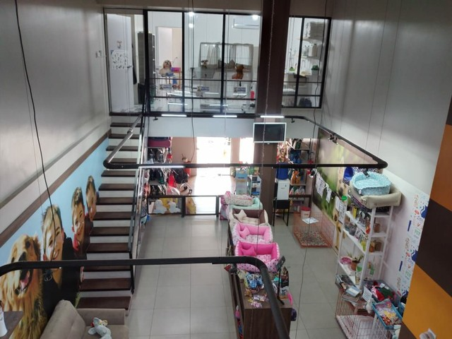 Pet Shop zona  norte Poa - Foto 5