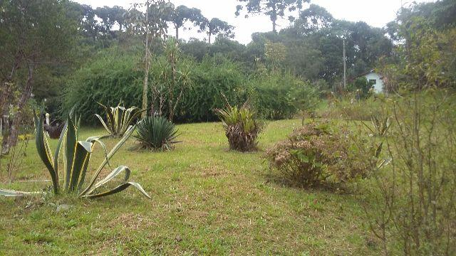 Excelente terreno 4000m - 10 KM do Parque Barigui/Ctba