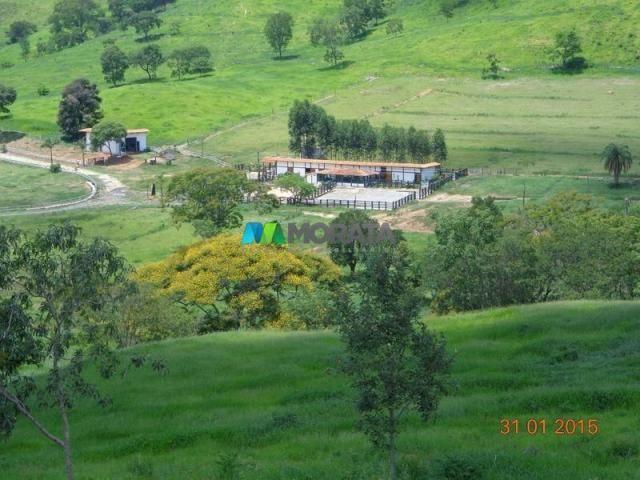 Fazenda à venda - 1.180 hectares - região jequitibá (mg) - Foto 13