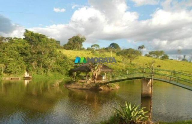 Fazenda / haras à venda - 16 hectares - brumadinho (mg) - Foto 11