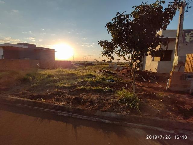 Terreno Cidade Jardim I - Foto 4