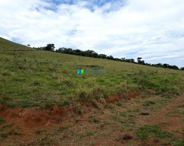 Fazenda à venda - 90 hectares - lavras (mg) - Foto 3