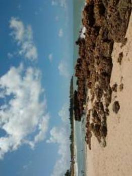 Apartamento/flat na praia do amor - Réveillon e temporada - Foto 3