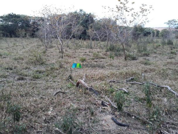 Fazendinha - 08 hectares - paraopeba (mg) - Foto 19