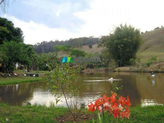 Fazenda / haras à venda - 100 hectares - rio casca (mg) - Foto 2