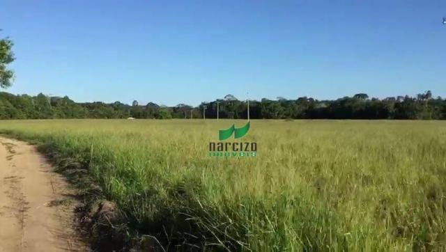 Fazenda rural à venda, belmonite, belmonte. - Foto 8