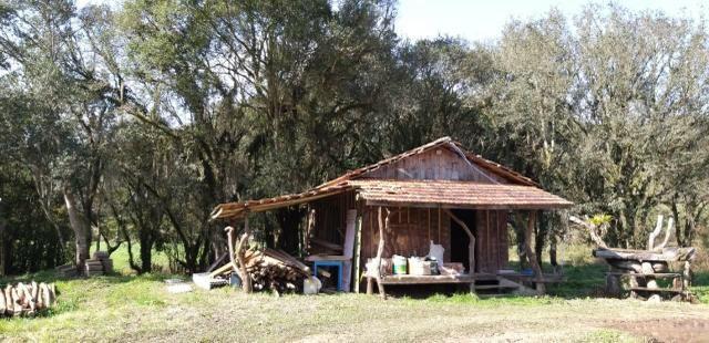 Sítio a venda em Urubici/área rural em Urubici - Foto 4