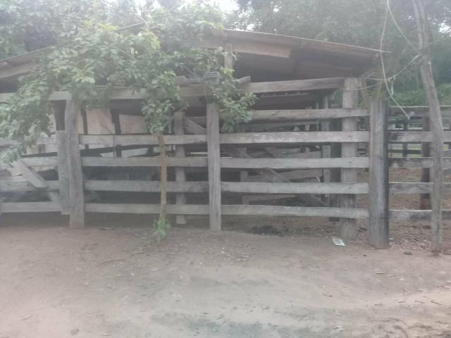 Fazenda 80 hectares próximo a Cuiabá - Foto 4
