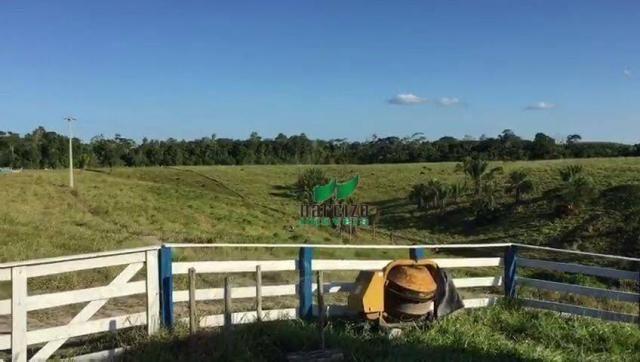 Fazenda rural à venda, belmonite, belmonte. - Foto 20