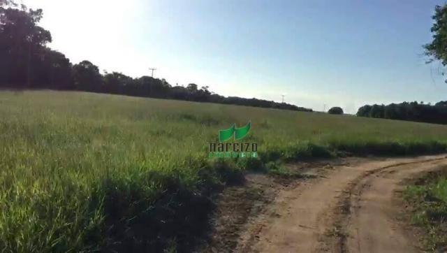 Fazenda rural à venda, belmonite, belmonte. - Foto 19