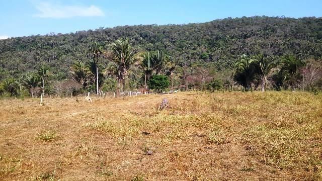 Fazenda 142 ha Serra de São Vicente MT - Foto 6