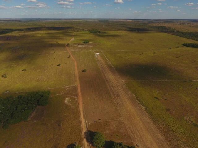 935 há (193 alq) Pecuária e Grãos com ótima sede e benfeitorias e pista de pouso de 1.300m