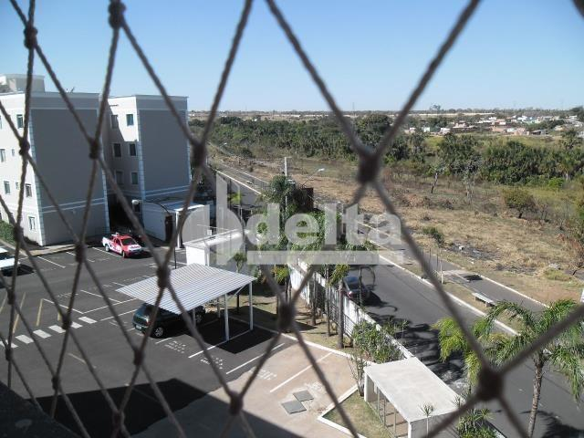 Apartamento à venda com 2 dormitórios em Shopping park, Uberlandia cod:20346 - Foto 8