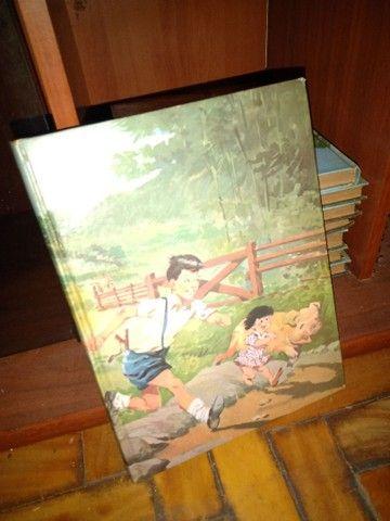 Coleção de livros Monteiro Lobato - Foto 2