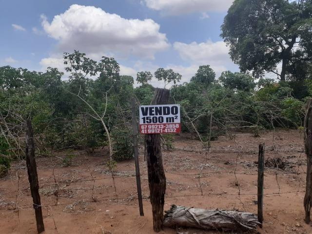 Vendo Terreno de esquina medindo 30 x 50 m em T. Lagoas.Ms - Foto 3