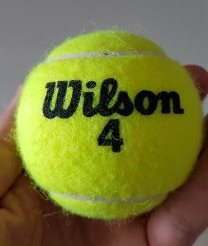 5cfabf998e Tubo de Bola de Tênis Wilson Championship Extra Duty com 3 Bolas ...