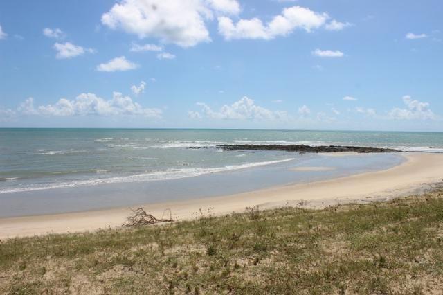 Excelente terreno beira mar na praia de Monte Alegre - TE0019 - Foto 11