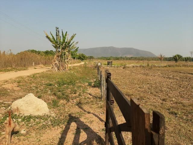 Chácara com 5 hectares na Agrovila das Palmeiras - Foto 5