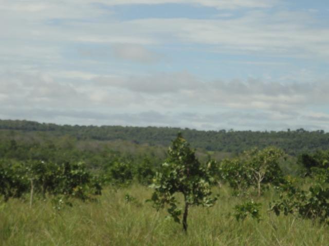 Sítio Chapada dos Guimarães 22 hectares - Foto 3