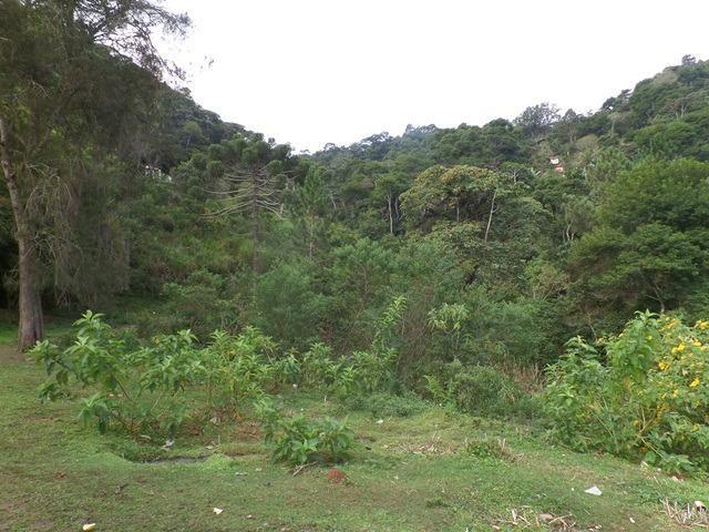 064 - Área de Terras nas Montanhas - Teresópolis - R.J - Foto 2