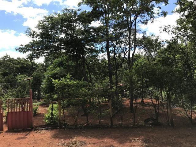 Vendo chácara em condomínio fechado lago dos cisnes, Felixlândia mg - Foto 8
