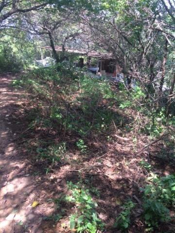 Ótimo Sítio 1,6 Hectares na Área Rural de Olinda, Aceito Automóvel ou imóvel - Foto 17
