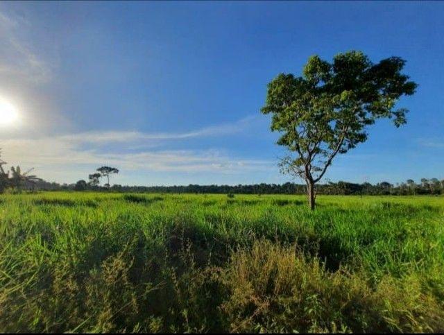 Fazenda financiada  - Foto 3