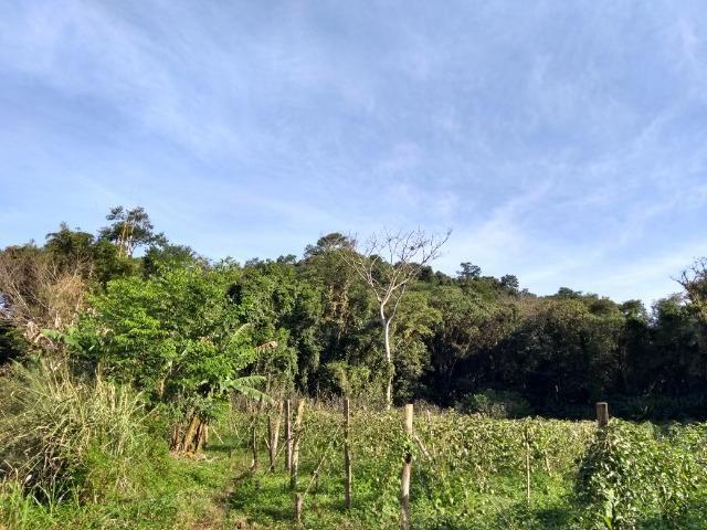 Área com 30 hectares com 600 metros de rio - Foto 6