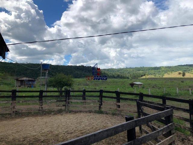 Fazenda à venda, por R$ 18.000.000 - Zona Rural - Ji-Paraná/RO - Foto 14