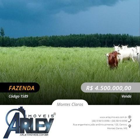 Fazenda/com um projeto que da valorização as terras