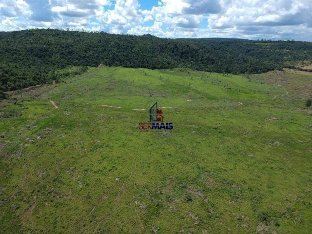 Fazenda à venda, por R$ 18.000.000 - Zona Rural - Ji-Paraná/RO - Foto 7