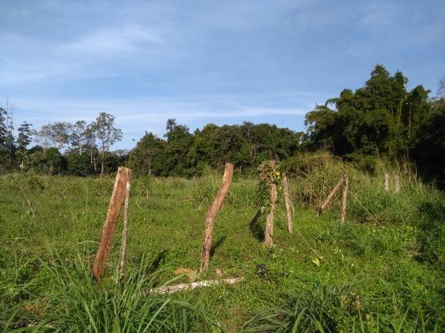 Área com 30 hectares com 600 metros de rio - Foto 11
