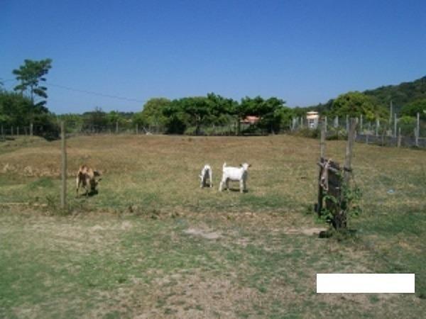 Código:36 Excelente sítio com 6000 m2 em condomínio fechado próximo ao Centro de Maricá co - Foto 5